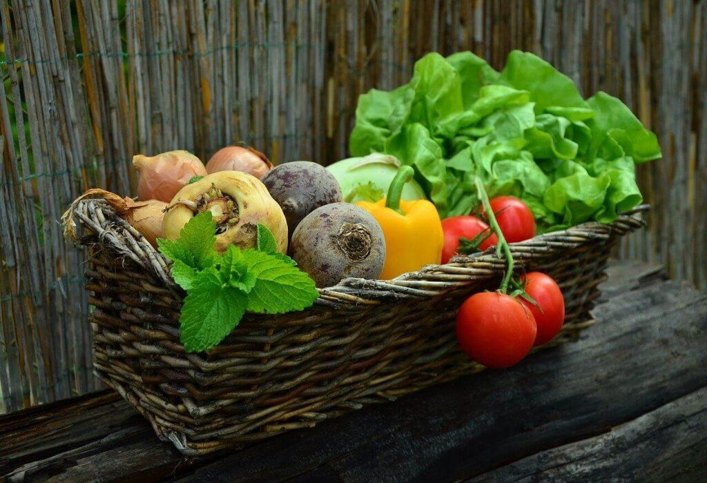 aliments riches en fibres pour les enfants